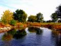14-Pond
